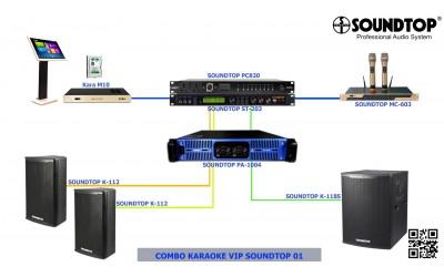 Combo Karaoke Vip 1 SoundTop